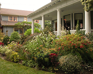 Bellingham Landscape Maintenance for Commercial and Residential accounts